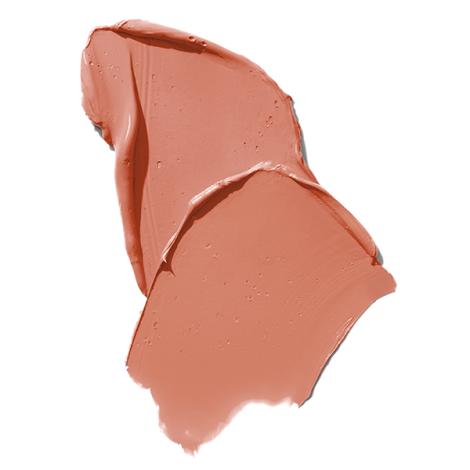 PDL Cosmetics Liquidlip Blessed